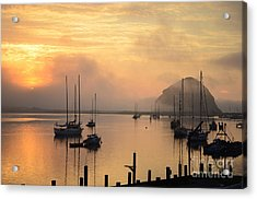 Peaceful  Acrylic Print by Johanne Peale