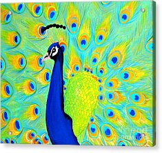 Peacock. Inspirations Collection. Acrylic Print by Oksana Semenchenko