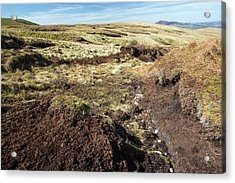 Peat Hags On King Bank Head Acrylic Print by Ashley Cooper