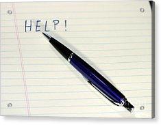 Pen Help Acrylic Print by Henrik Lehnerer