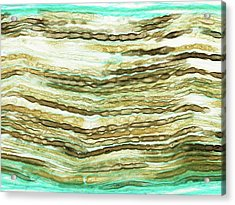 Peripheral Nerve Acrylic Print