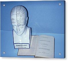 Phrenology Head Acrylic Print