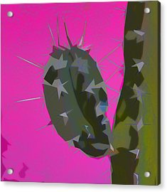 Pink And Green Cactus Collage Acrylic Print