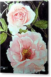 Pink Roses Acrylic Print by Carol Grimes