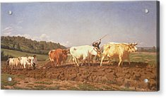 Ploughing In The Nivernais, 1850 Acrylic Print