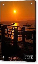 Plymouth Harbor Sunrise Acrylic Print by Catherine Reusch  Daley