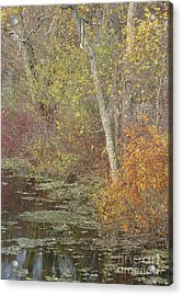 Pondside Pastel Acrylic Print by Ann Horn