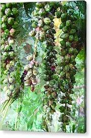 Poplar Secrets Acrylic Print by Shirley Sirois