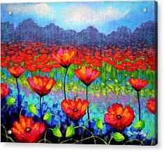Poppy Vista Acrylic Print
