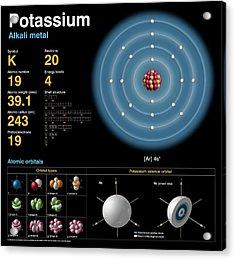 Potassium Acrylic Print by Carlos Clarivan
