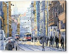 Prague Vodickova Str  Acrylic Print by Yuriy  Shevchuk
