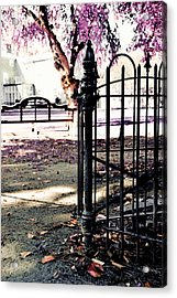 Presidential Mansion Acrylic Print by JAMART Photography