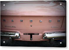 Acrylic Print featuring the photograph Pretty In Pink by Laurie Perry