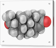 Progesterone Hormone Molecule Acrylic Print by Laguna Design/science Photo Library
