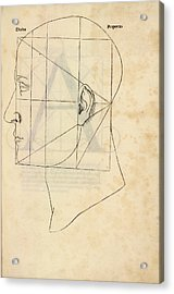 Proportions Of The Human Face Acrylic Print by Library Of Congress