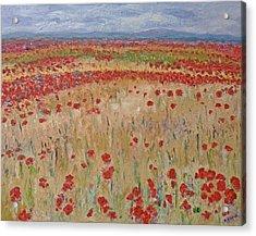 Provence Poppies Acrylic Print by Barbara Anna Knauf