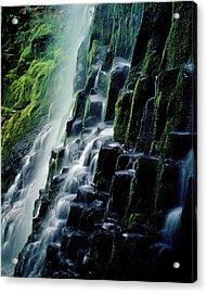 Proxy Falls Acrylic Print
