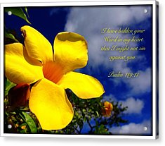 Psalm 119 11 Acrylic Print