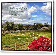 Psalm 23 1 Acrylic Print