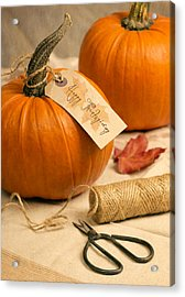Pumpkins For Thanksgiving Acrylic Print