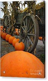 Pumpkins With Old Wagon Acrylic Print