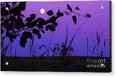 Purple Moon Acrylic Print
