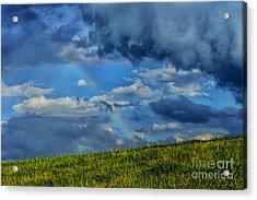 Rainbow Over Pasture Field Acrylic Print by Thomas R Fletcher