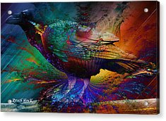Rainbow Raven Acrylic Print by The Feathered Lady