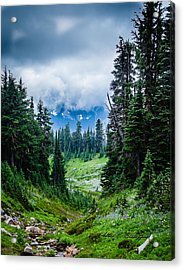 Rainer Glacial Meadow Acrylic Print