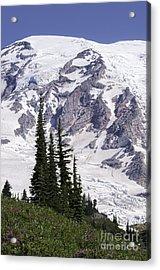 Rainier Summit Acrylic Print