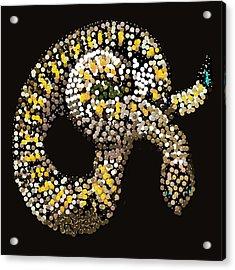 Rattlesnake Bedazzled Acrylic Print