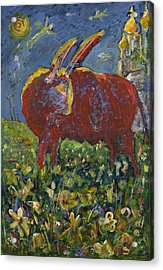 Red Bull In The Flower Field Acrylic Print