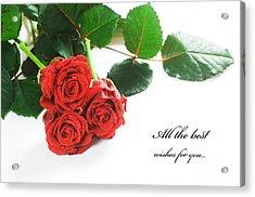Red Fresh Roses On White Acrylic Print by Michal Bednarek