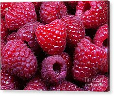 Red Raspberries Acrylic Print