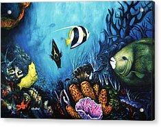 Reef Dwellers Acrylic Print