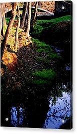 Acrylic Print featuring the photograph Reflection2 by Steve Godleski