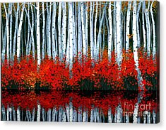 Reflections - Sold Acrylic Print by Michael Swanson