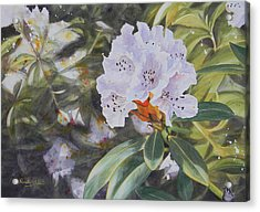 Rhododendron Jungle Acrylic Print by Adel Nemeth