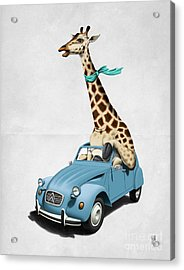 Riding High Wordless Acrylic Print