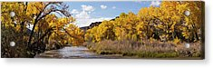 Rio Grande River At The Orilla Verde Acrylic Print by Panoramic Images