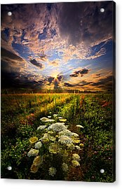 Rise And Shine Acrylic Print by Phil Koch