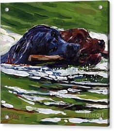 River Run Acrylic Print by Molly Poole