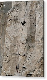 Rock Climber On El Capitan Acrylic Print by Mark Newman