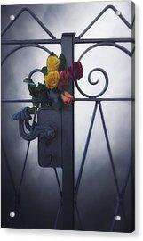 Roses Acrylic Print by Joana Kruse