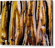Rough Abstract Ceramic Surface Acrylic Print by Kerstin Ivarsson
