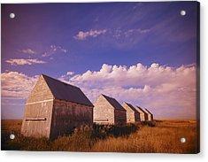 Row Of Old Farm Houses Acrylic Print by Kelly Redinger