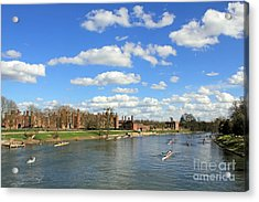 Rowing On The Thames At Hampton Court Acrylic Print