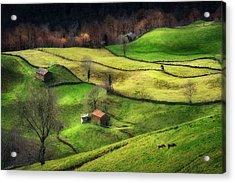 Rural Life Acrylic Print by Oskar Baglietto