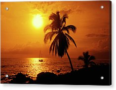 Sailboat And Palm Tree At Sunset Acrylic Print by Ron Dahlquist