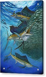Sailfish With A Ball Of Bait Acrylic Print